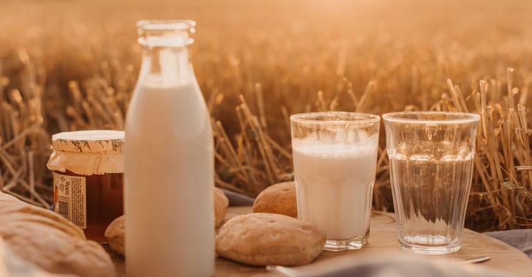 Distribution de lait, fruits et légumes dans les écoles